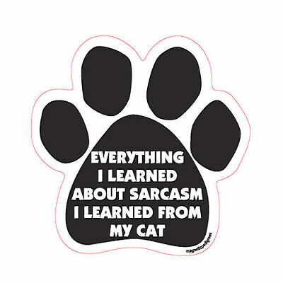 Everything I Learned About Sarcasm I Learned From My Cat Paw Quote Car Magnet