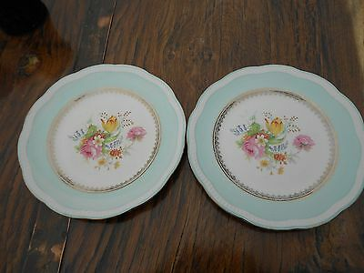 """2 Vintage 1950's 10"""" Crown Clarence Plates decorated with Wild Flowers"""