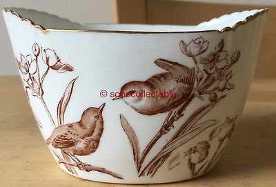 GEORGE JONES porcelain WESTBOURNE AESTHETIC movement BIRDS SUGAR BOWL