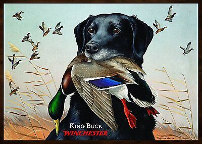 Rockin W Brand Winchester King Buck Area Rug, Multi-Color