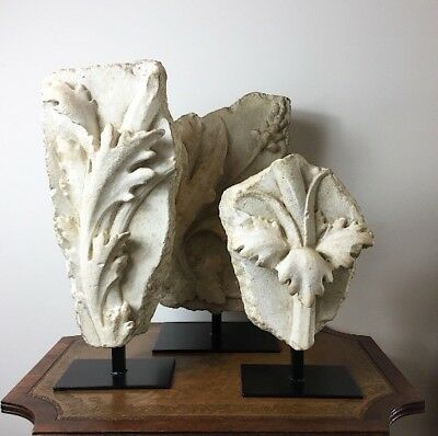 A Group of 3 Acanthus Leaves on Stands.