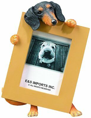 Dachshund Black Dog Picture Photo Frame
