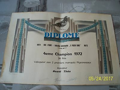 ancien diplome concours pigeon