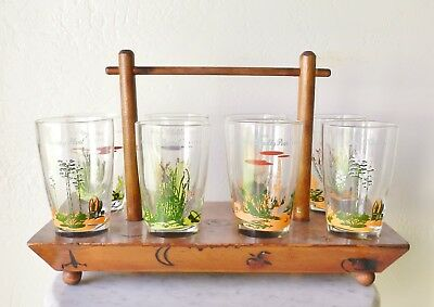 Set 8 Blakely Oil CLEAR Glasses + Wooden Tray Tumblers Cups Arizona