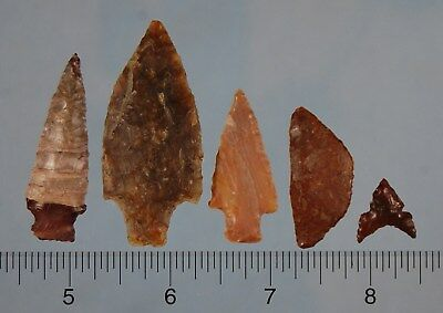 Group of 5 Columbia River Points
