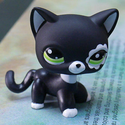 BLACK CAT LITTLEST PET SHOP LPS COLLECTION Action Figure gift RARE #2249 TOY 2""