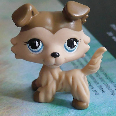LPS COLLECTION Action Figure Brown Collie dog 2 inch LITTLEST PET SHOP #893