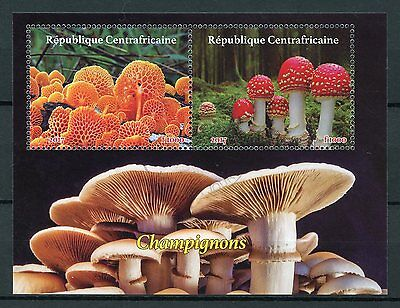 Central African Rep 2017 CTO Mushrooms 2v M/S Fly Agaric Fungi Stamps