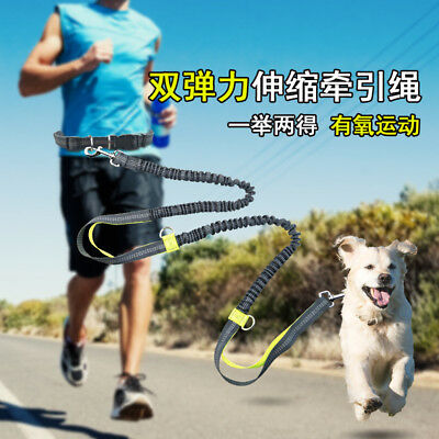 Pet Dog Waist Strap Leash Hands Free With Running Buffer Traction Rope Bungee