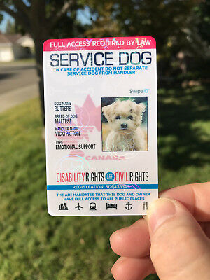 Holographic Canada Canadian Service Dog Id Card Badge Adi Assistance Animal Tag