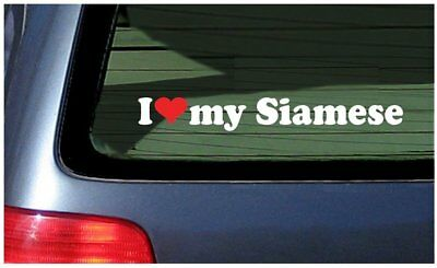I Love my Siamese ~ White with Red Heart Window Decal Sticker Cat