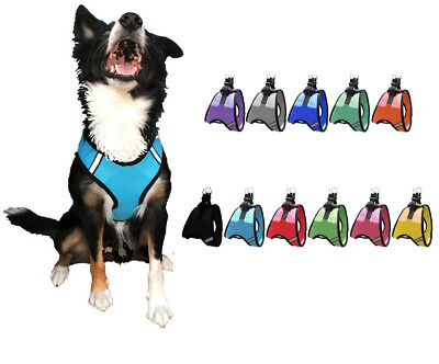 Nylon Mesh Easy Step-In Quick-Release Padded Soft Puppy Pet Dog Harness
