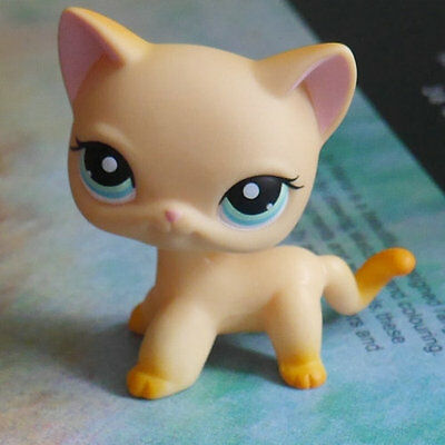 "LPS COLLECTION Figure short hair cat kitty  LITTLEST PET SHOP TOY 2""  #339"