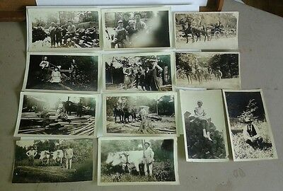 "Espyville,Pennsylvania Vintage Photograph""Lot of 12 Lumber Camp""1920's 4X2(B7)"