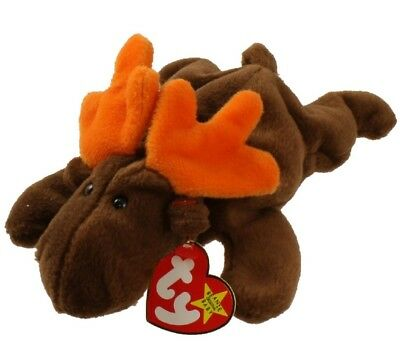 TY Beanie Baby - CHOCOLATE the Moose (1993) RETIRED