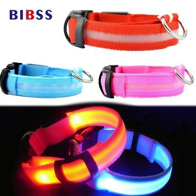 LED Night Flashing Glowing Pet Dog Collar, USB Charging Collar Luminous for Dogs
