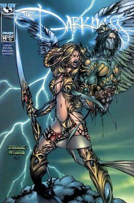 Darkness (Vol 1) #  14 Near Mint (NM) Image MODERN AGE COMICS