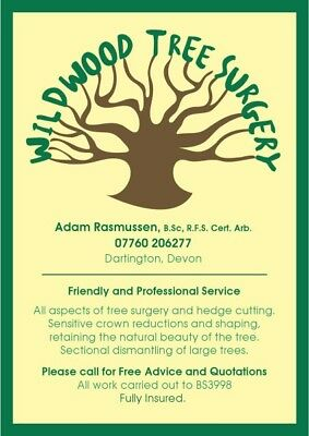 Successful 10 Old Year Tree Surgery Business, Devon. Inc Tools, Truck, Contacts