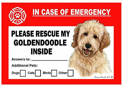 Goldendoodle Pet Savers Emergency Rescue Window Cling Sticker