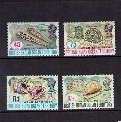 British Indian Ocean Territory: 1974, Wildlife (2nd series) Shells, MNH set