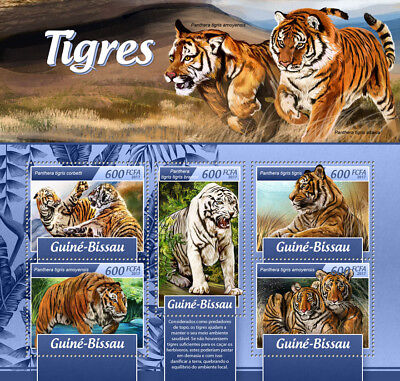 Guinea-Bissau 2017 MNH Tigers Tiger 5v M/S Big Cats Wild Animals Stamps