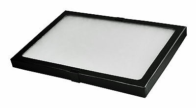 Riker Display Case Box Glass Top Shadow Collection Foam Jewelry Gem Table Coins
