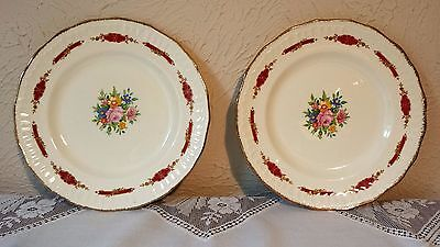 1950's Swinnerton Luxor Vellum Staffordshire Roses  Pair Of Dinner Plates 9 3/4""