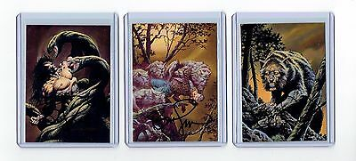 Bernie Wrightson Signed More Macabre Cards (M)