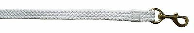 Horse Cotton Grove 2.4m Long 1 Inch Braided Lead with Chunky Brass snap hook