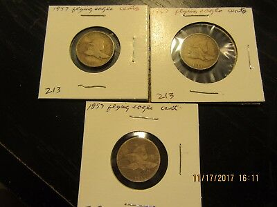 1857 flying eagle cents - 3 coins