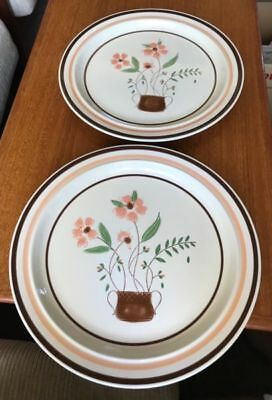 2 x Countryside collection stoneware dinner plates