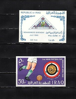 Iraq - Commemorative Souvenir Sheet - Mnh  -  Lot (Ssh 25)