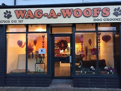 Busy Dog Grooming Business for sale