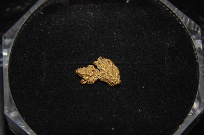 Natural Gold Nugget - Special Gift Piece