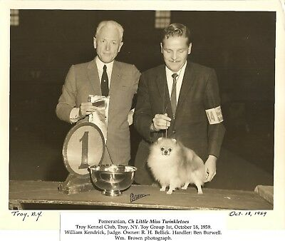 Pomeranian Ch Little Ms Twinkletoes Ben Burwell Wm Brown Photo 1959 Kendrick JD