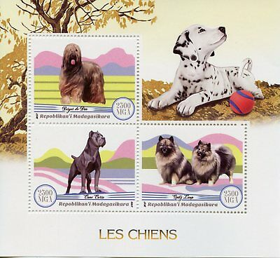 Madagascar 2017 MNH Dogs 3v M/S Chiens Pets Domestic Animals Stamps