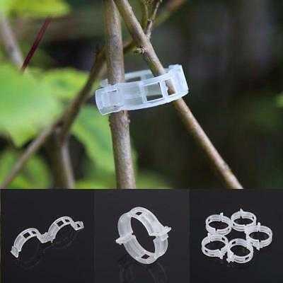 100pcs Garden Plant Trellis Clips Tomato Flower Vine Grow Securing Supports Ties