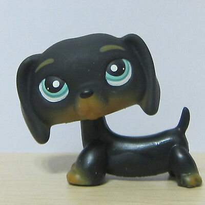 Littlest Pet Shop Animal LPS Loose Toy #325 Chien Teckel Black Dachshund Dog A1