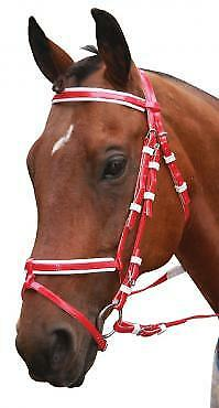Status Pvc Event Bridle Horse And Equestrian