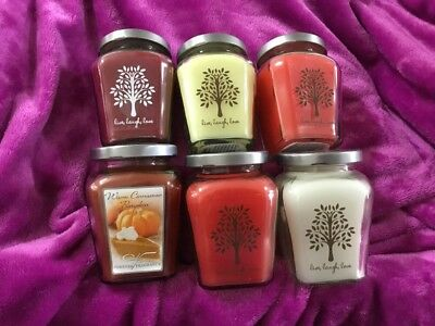 Home Interiors /Celebrating Home # 3 Set Of 6 Variety Candles See Pictures