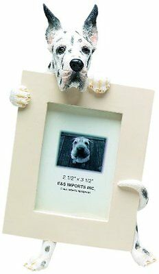 Harlequin Great Dane Dog Picture Photo Frame
