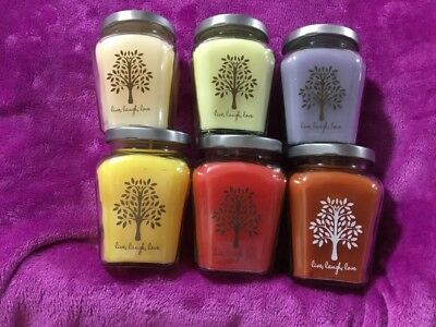 Home Interiors /Celebrating Home # 10 Set Of 6 Variety Candles See Pictures