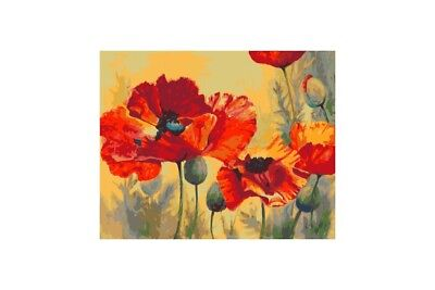 Paint By Numbers Kit Field Poppies T40500010  40 X 50 Cm.