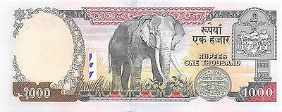 Nepal  1000  Rupees ND. 2002  P 51 Uncirculated Banknote