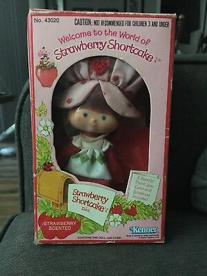 Vintage 1980 Strawberry Shortcake Doll In Box  #43020