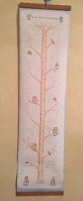 Vintage 1976 Peter Rabbit - Child's Growth Chart- Beatrix Potter  NEW w/ Box
