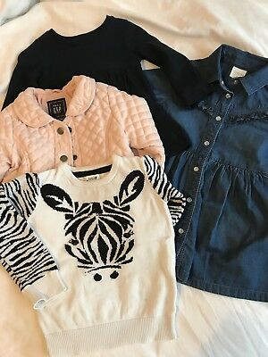 Baby Girl 12-18 Months Bundle Denim Dress, Pink Quilted Jacket Gap, Bows&Arrows