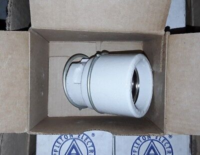 Appleton Electric VPLR-25 Replacement Porcelain Socket