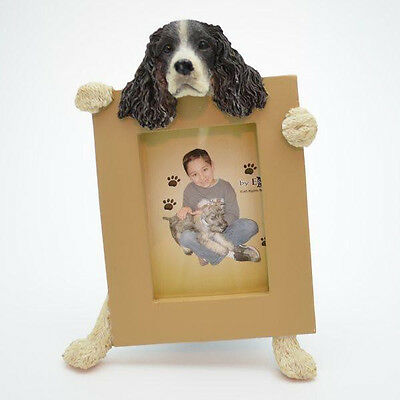 Springer Spaniel Frame Dog Picture Photo Frame