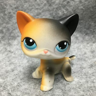Littlest Pet Shop Animals LPS Toy #106 Black & Orange Short Hair Cat Figure